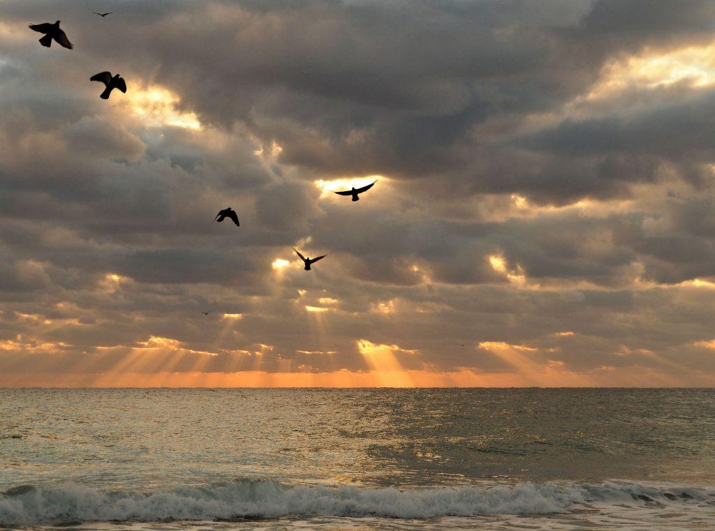 Ft-Lauderdale-Sunset