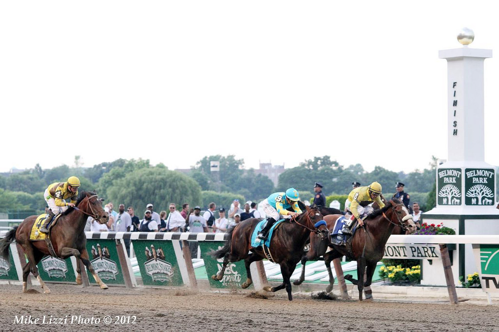 Down the Stretch at the Belmont Stakes